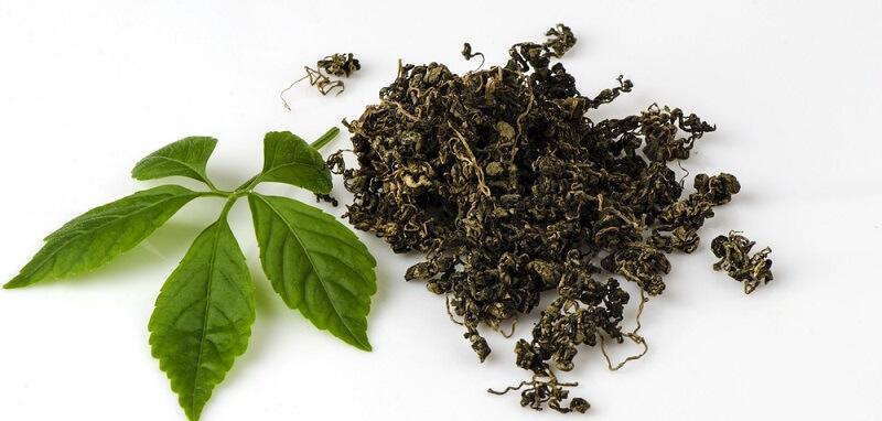 Uống trà giảo cổ lam mỗi ngày có thể cải thiện máu nhiễm mỡ
